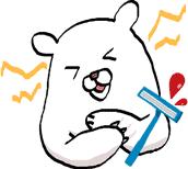 カミソリで血が出て痛がるクマ