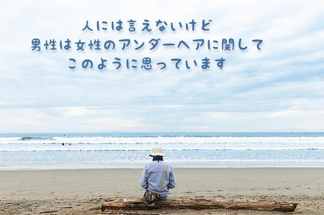 海岸の流木に腰かけアンダーヘアを想う