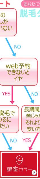 yesno診断銀座カラーバナー