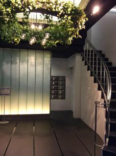 湘南美容外科の入り口階段