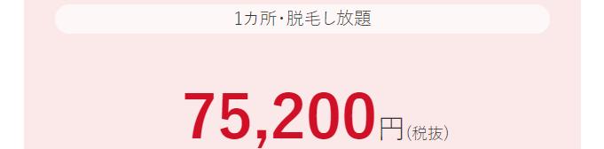 スタンダードチョイス201806 し放題で75200円