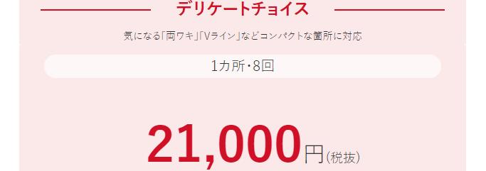 デリケートチョイス8回21000円