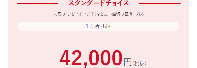 スタンダードチョイス8回42000円